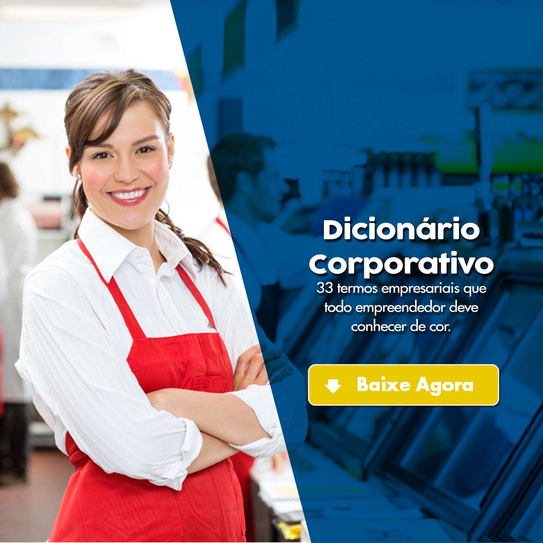 dicionario corporativo
